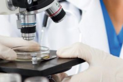 Современные виды микроскопии