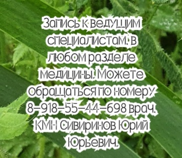 Химиотерапевт - Ежова М.О. Ростов